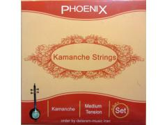 Strings of Persian Kamanche-Qoqnoos